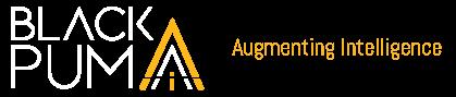 The Black Puma Logo